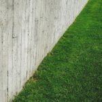 将来を想定した生け垣の植え方とは?近隣トラブルは未然に防ぐ