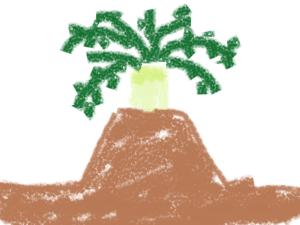 大根の畝を高くした